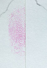 Fingerprint cut in half and treated with DFO and IND