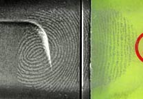 Fingerprint developed on a highlighter (detail).