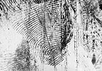 Lifted fingerprint on black Gellifter after inverting the colors.
