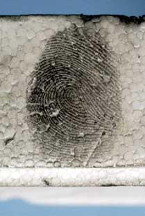 Powdered fingerprint on polystyrene packaging material
